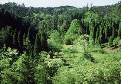六甲山高山植物園.jpg
