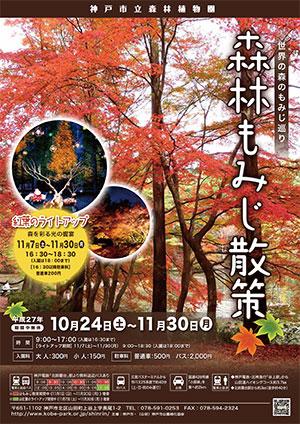 神戸市立森林植物園 森林もみじ散策2015.jpg