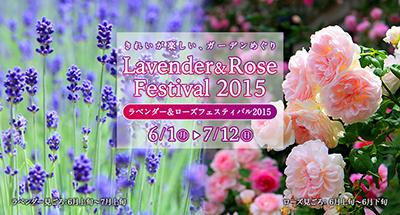 ラベンダー&ローズフェスティバル2015【2015/6/1(月)~7/12(日)】