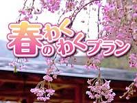 春ワク.jpg