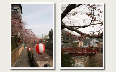 20120410有馬川沿い.jpg