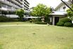 三の湯前芝生.jpg