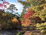 森林植物園5(ブログ用).jpg