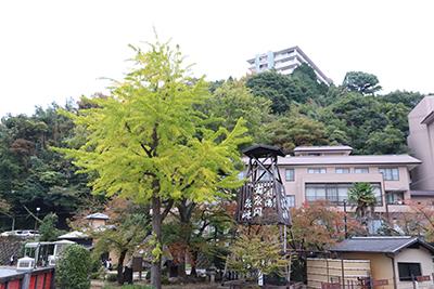 ★太閤橋191103(ブログ用).jpg