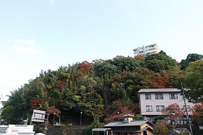 ★太閤橋21(ブログ用).jpg