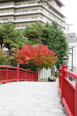 ねね橋1114-2.jpg