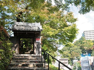 善福寺141026-2.jpg