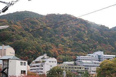山の紅葉.jpg