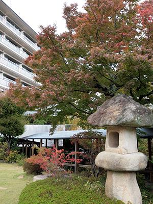 庭園141101-1.jpg