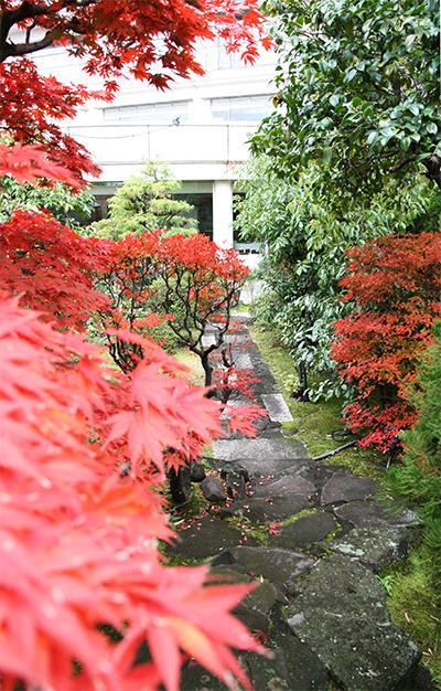 蘭の外庭 両側紅葉.jpg