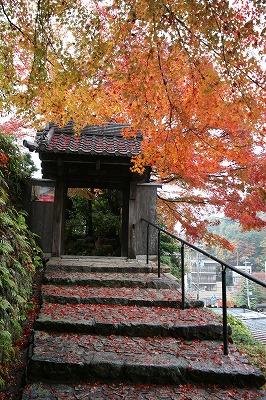 善福寺の石段.jpg