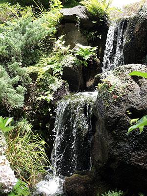兵衛向陽閣-庭園の滝.jpg