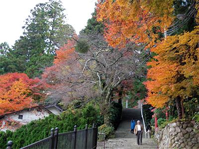 湯泉神社20141123-1.jpg