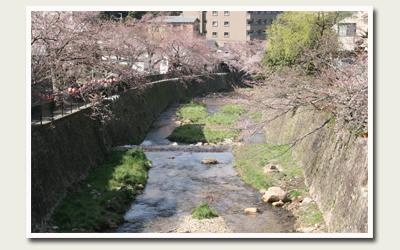 20120412有馬川沿い.jpg