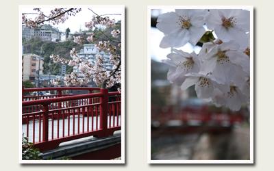 20120414ねね橋.jpg