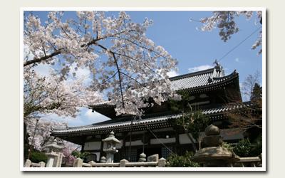 20120418温泉寺.jpg