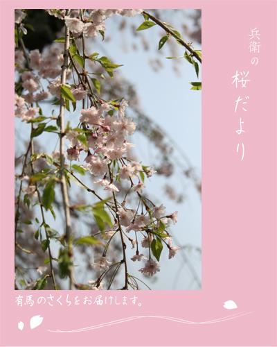 20120424三の湯トップ.jpg