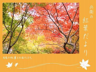 20121112秋.jpg
