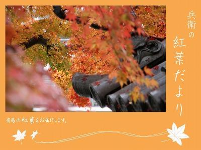 20121123善福寺.jpg