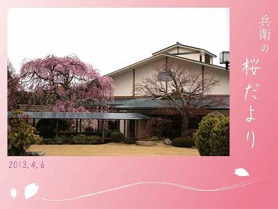 20130406-三の湯と枝垂桜.jpg