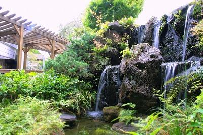 20130728夏の庭園.jpg