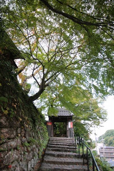 20131030-善福寺.jpg