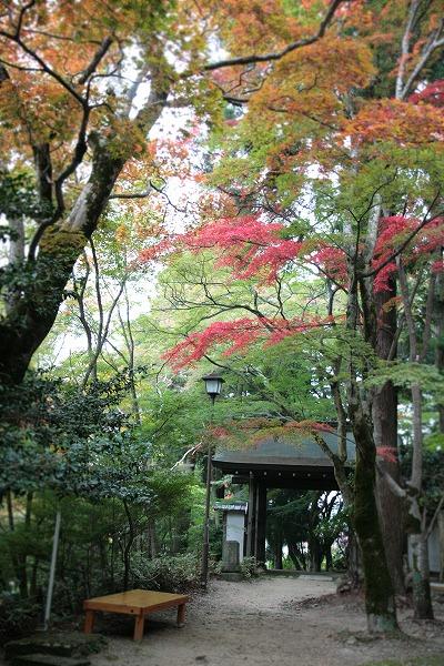 20131103瑞宝寺公園.jpg
