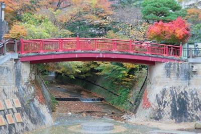 20131125-ねね橋と紅葉.jpg