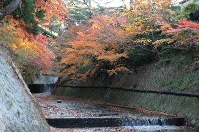 20131204-ねね橋の下より.jpg