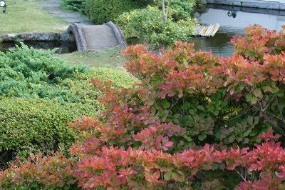 10F庭園.jpg