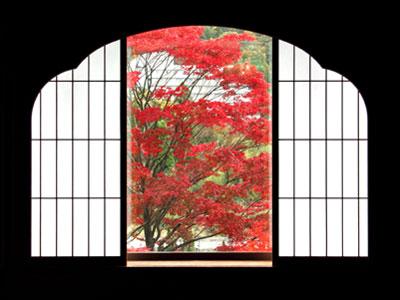 koyo_image.jpg